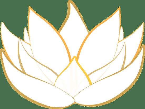 Lotus les sens ciel